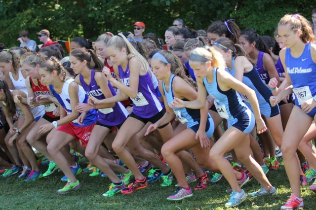 Local cross country teams were in action throughout the region last weeknd, including at the Monroe Parker Invitational, where Chantilly's Xaveria Hawvermale (with orange shoes) staked her claim to be mentioned among contenders for the Virginia 6A individual title. Photo: Ed Lull