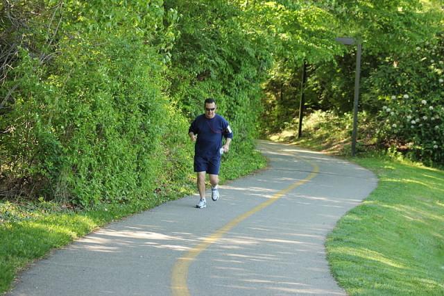 Mount Vernon Trail. Photo: Wikimedia Commons